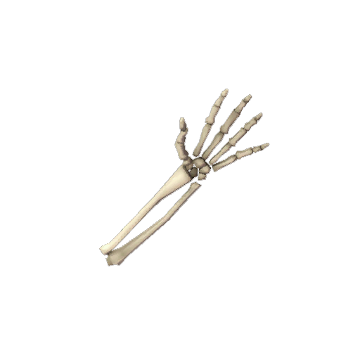 Skeleton arms png. Voodoo cursed backpack tf
