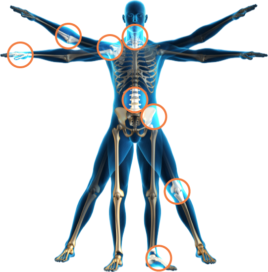 Skeleton clipart chiropractor. Can posture be the