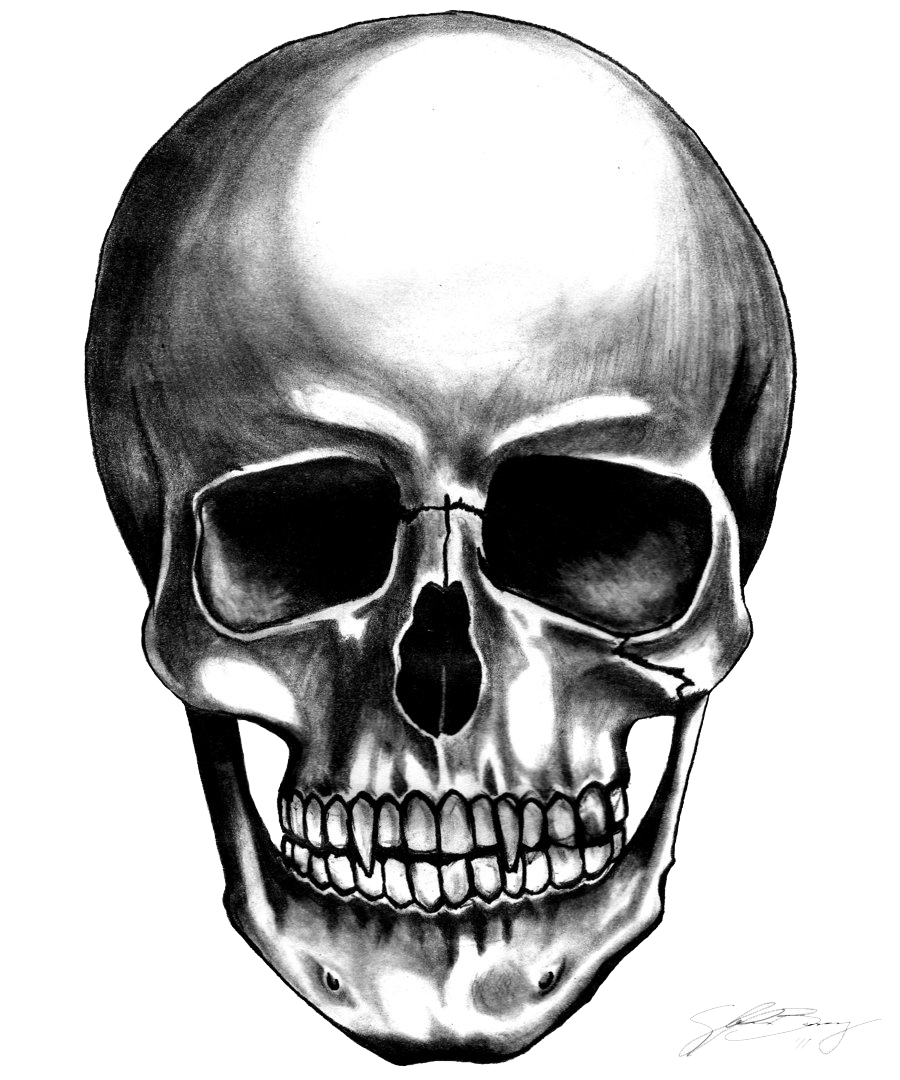 skulls transparent anime