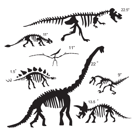 Skeletons drawing dinosaurs. Collection of dinosaur