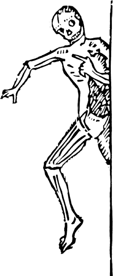 Skeletons drawing kid. Letterink draw letteris with