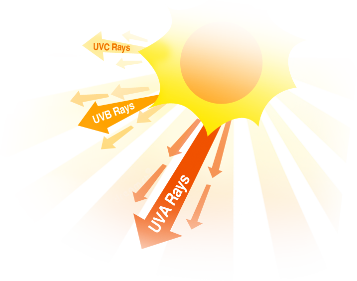 Skin clipart uv radiation. Good and bad effects