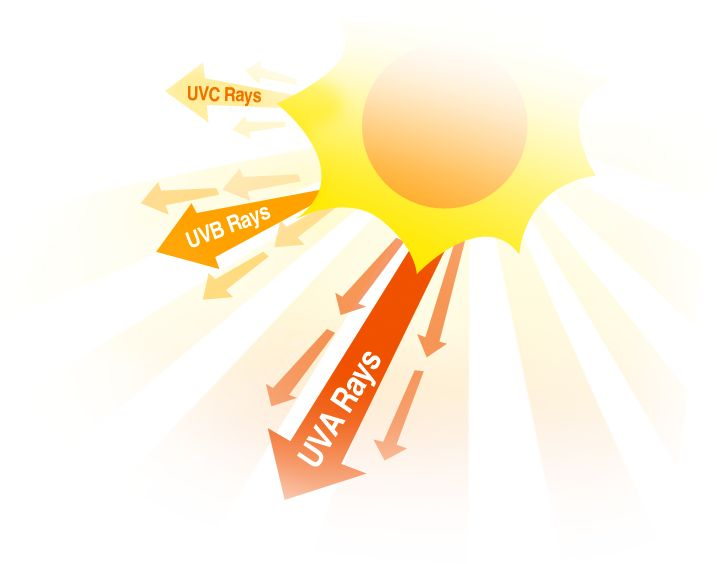 skin clipart uv radiation