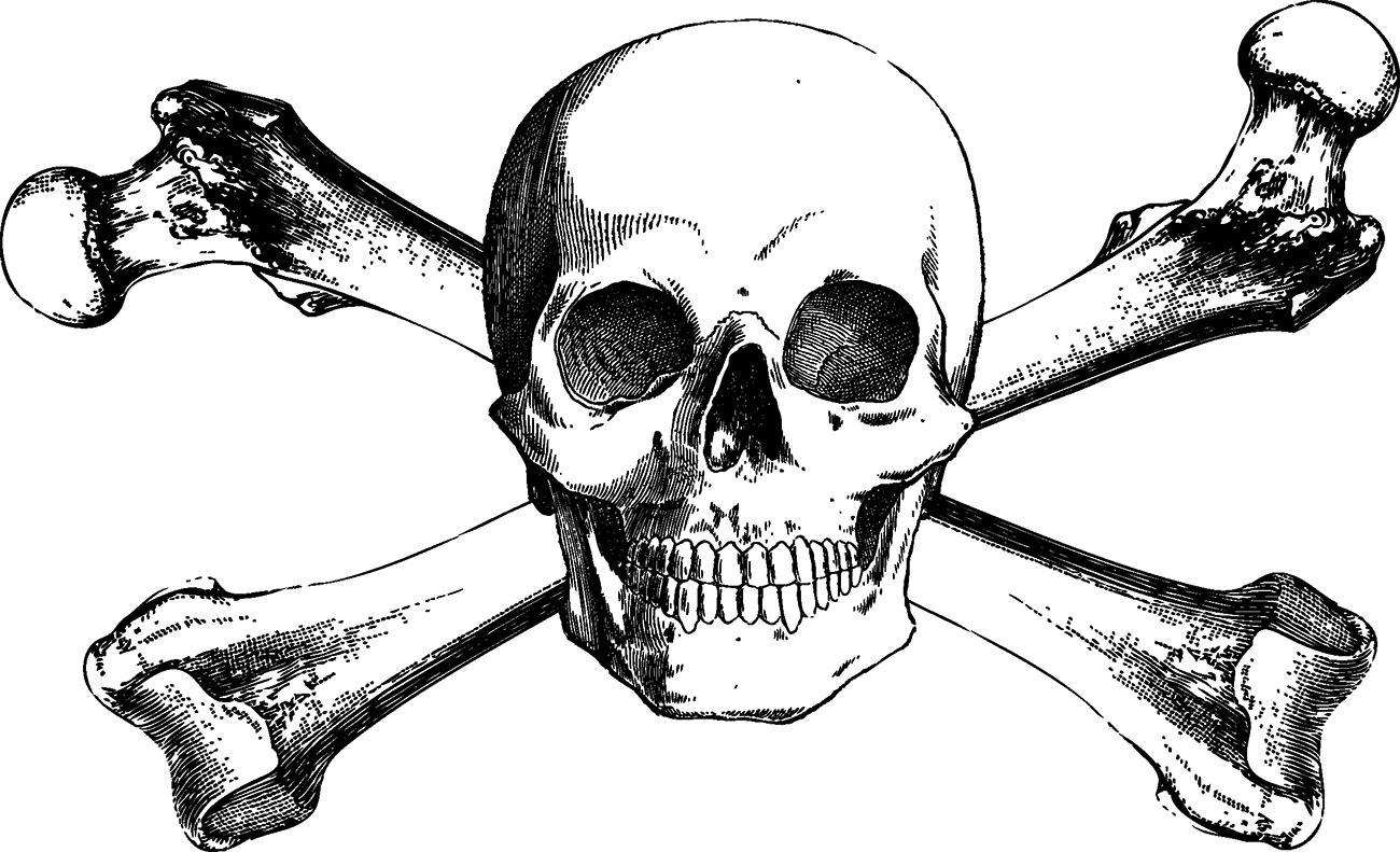 Crossbones drawing transprent free. Skull and bones png graphic free download