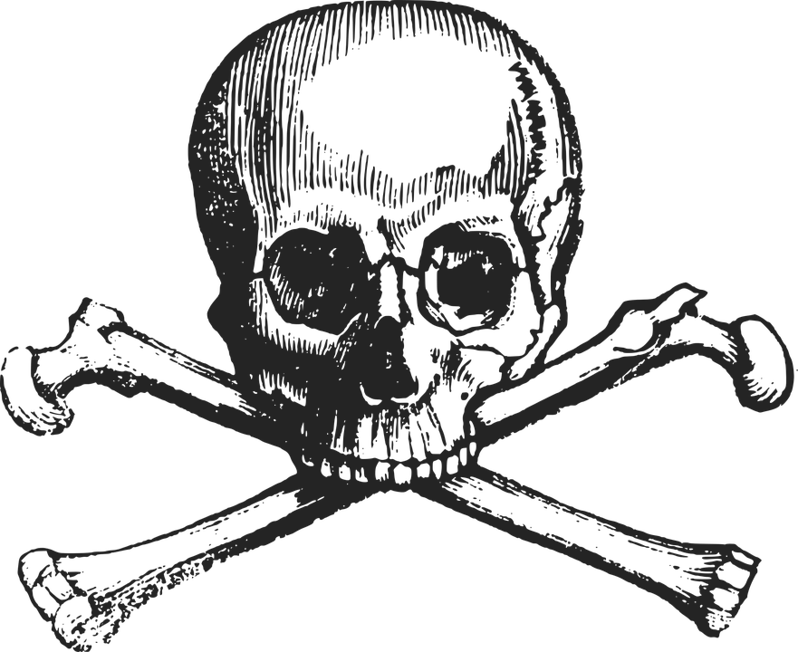 Skull and crossbones png transparent background. Image animal jam backgroundpng