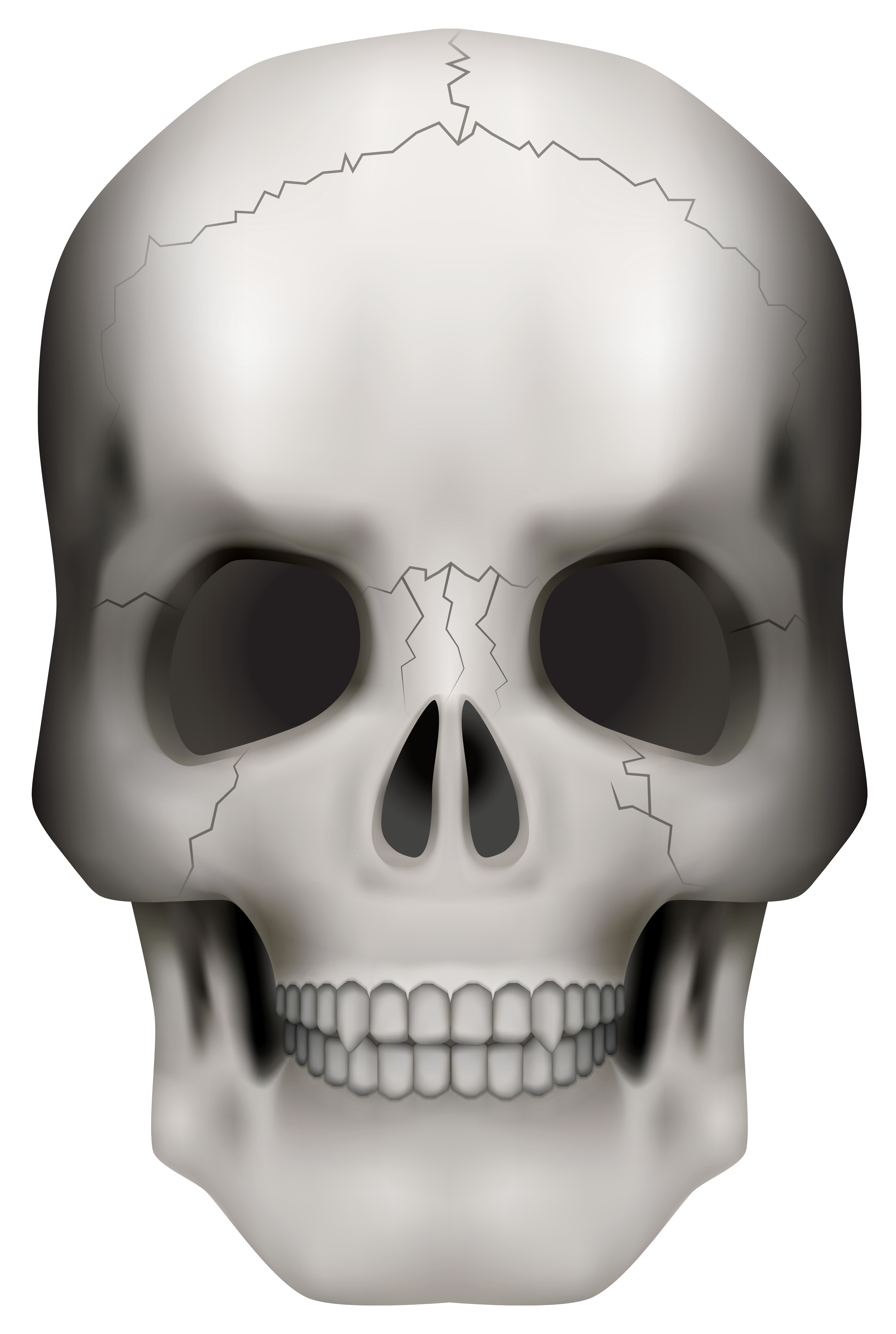Skull face png. Clipart image gallery yopriceville
