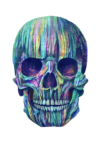Colored drawing skull. Art color draw grunge