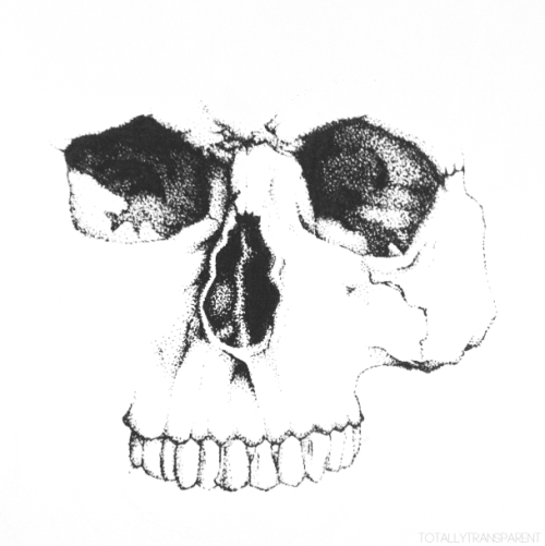 Freetoedit white blackandwhite clipart. Skull face png banner transparent library