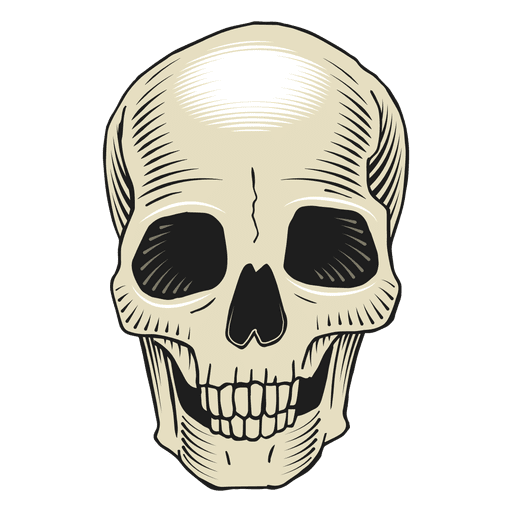 Skull face png. Scary illustration transparent svg