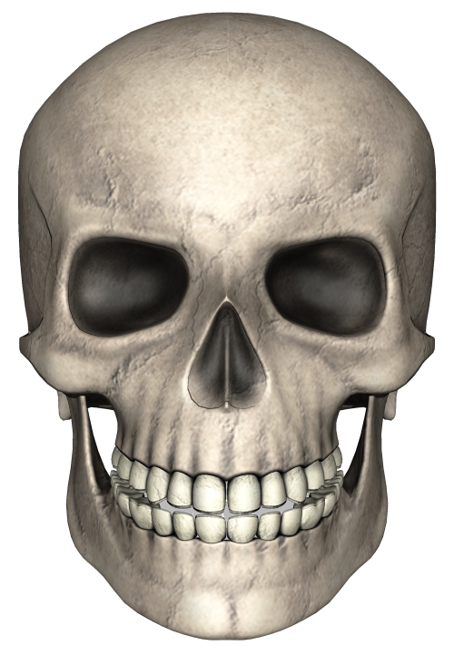 Image pngpix. Skull face png royalty free stock
