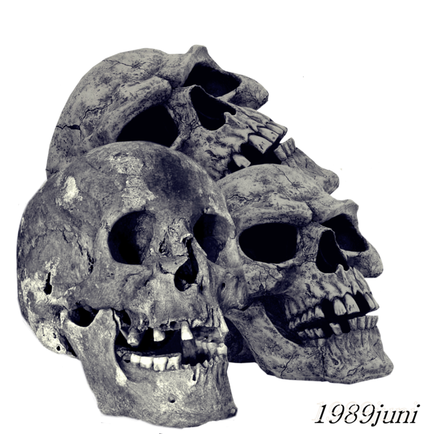 Skull statue png. Stock by juni on