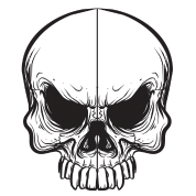 skulls transparent angry