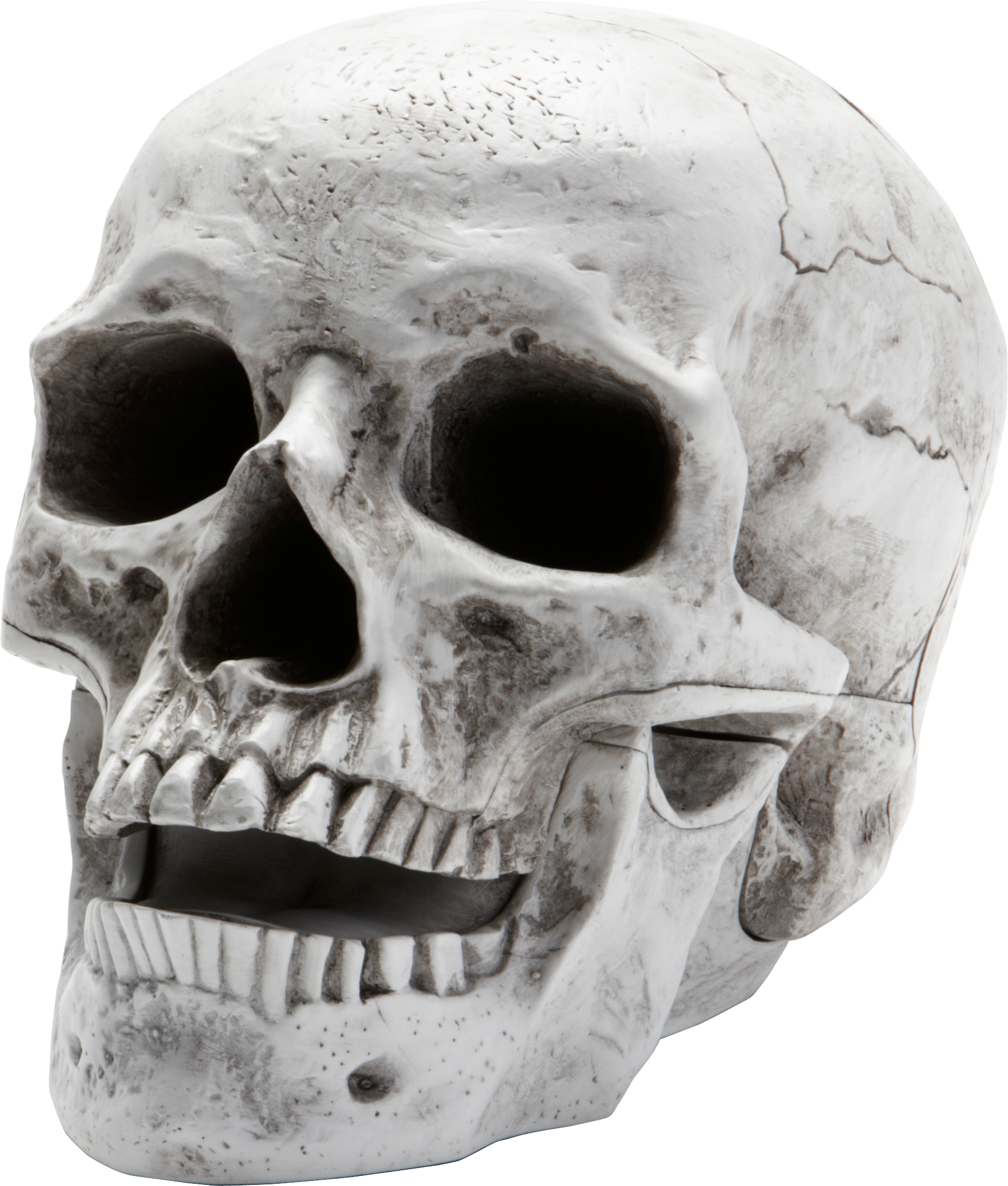 Skulls transparent editing. Skull png images the