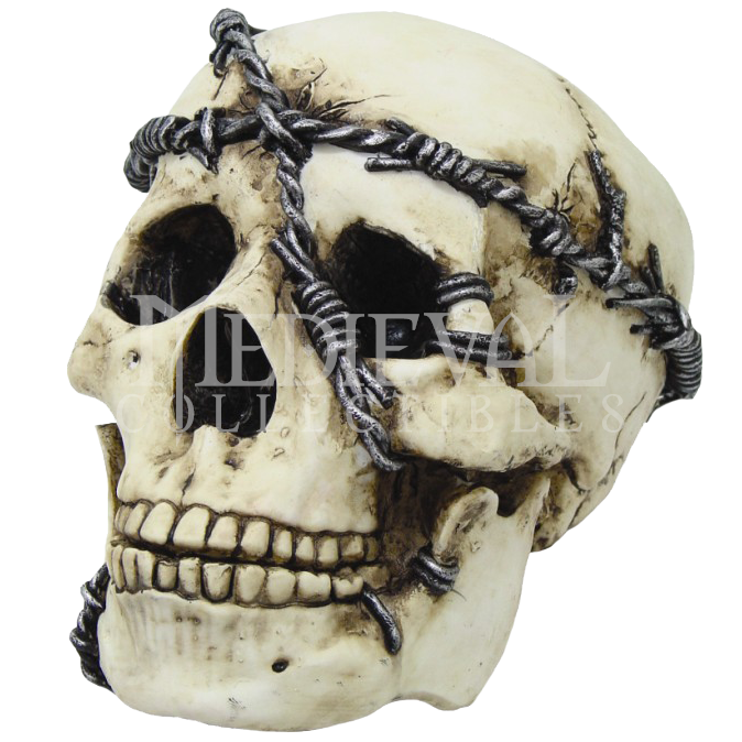 Skulls transparent security. Skull with barbed wire