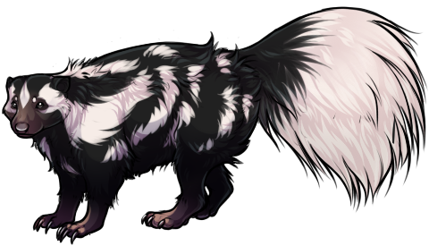 Skunk clipart spotted skunk. Companion by tokotime on