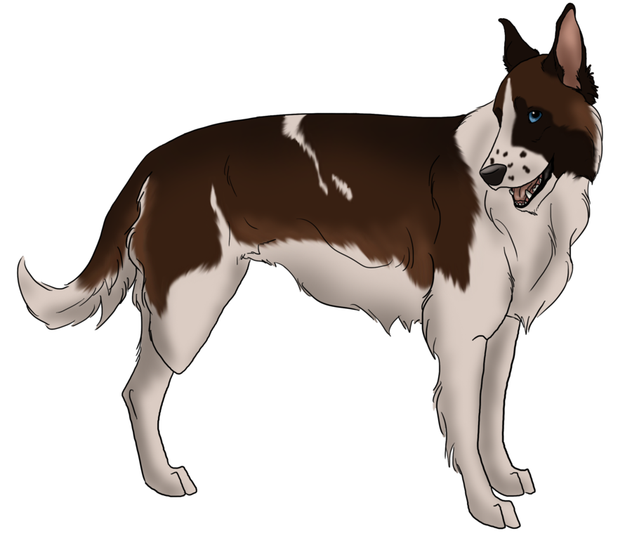 Trade drawing dog shelter. Rescue adopt tiko by