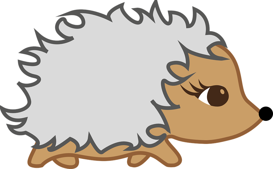 Sleepy drawing hedgehog. Collection of free hybernate