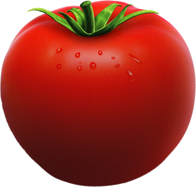 Slice clipart tomato. Download free png transparent