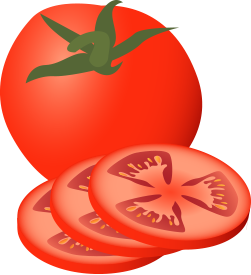 Tomato clipart two. Slice pencil and in