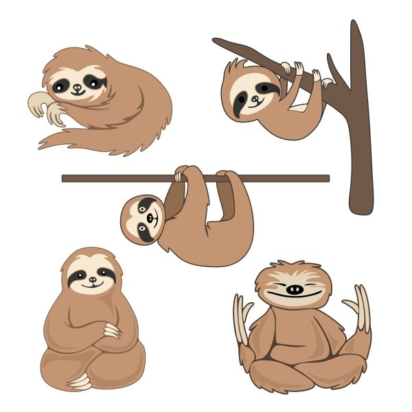 Pack cuttable design cut. Sloth clipart banner download