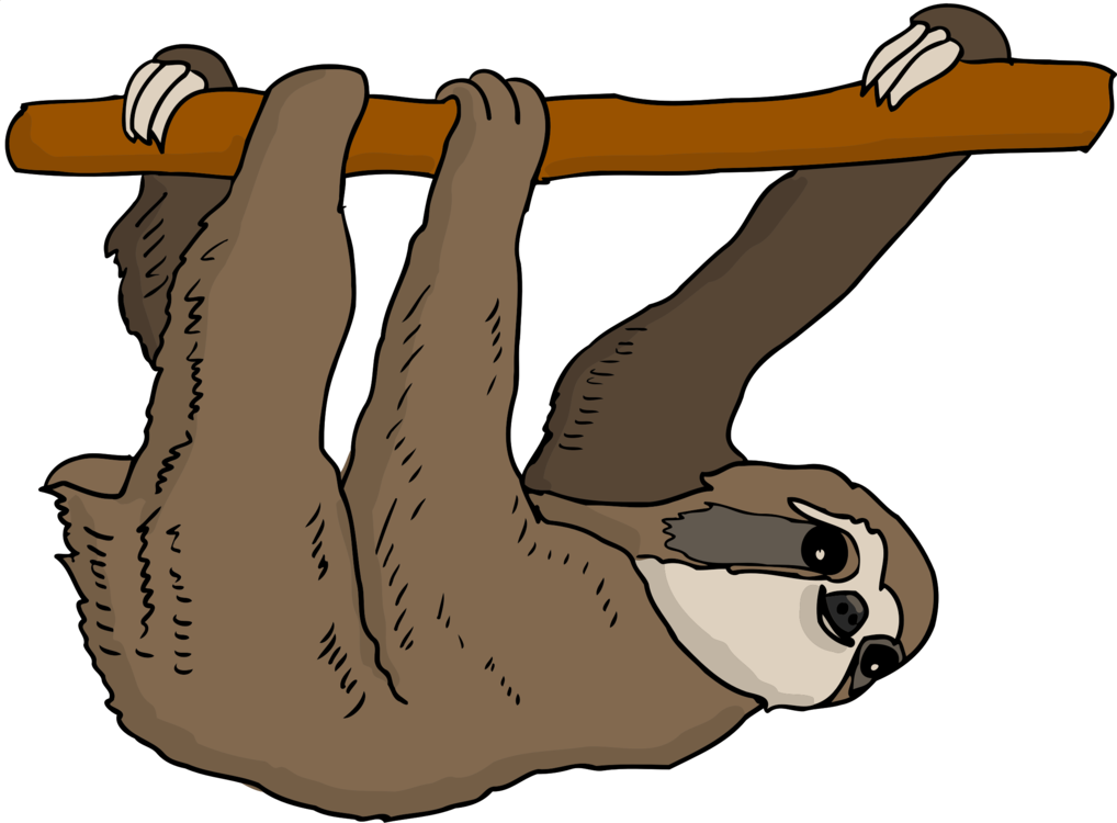 Three toed armadillo anteater. Sloth clipart png free library