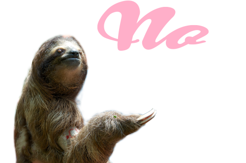 Tumblr no made by. Sloth clipart sloth transparent clip free