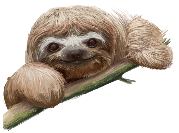Sloth .png. Vector clipart psd peoplepng