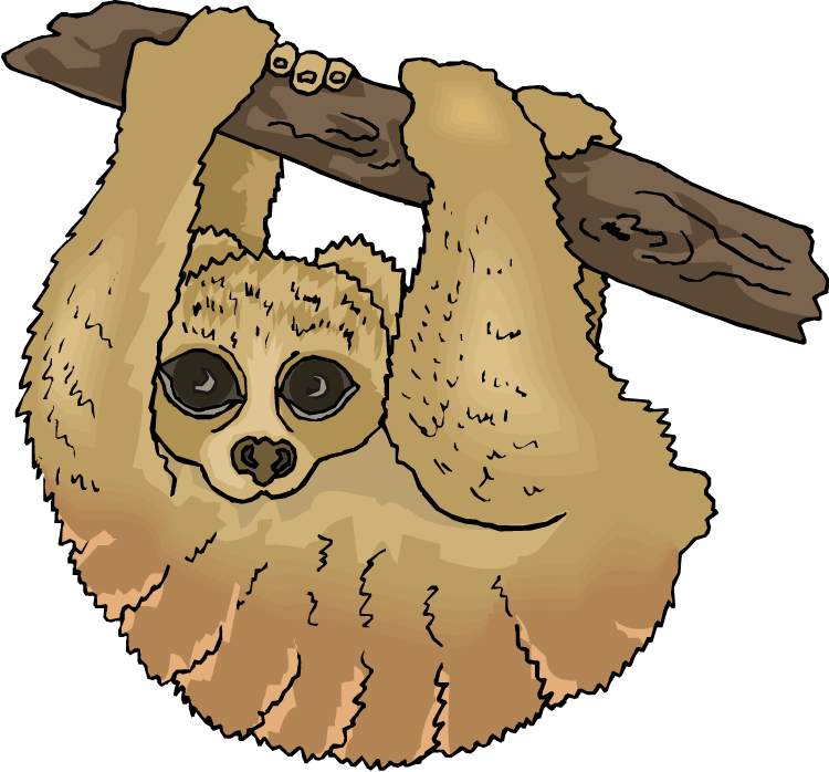 Sloth clipart. Free