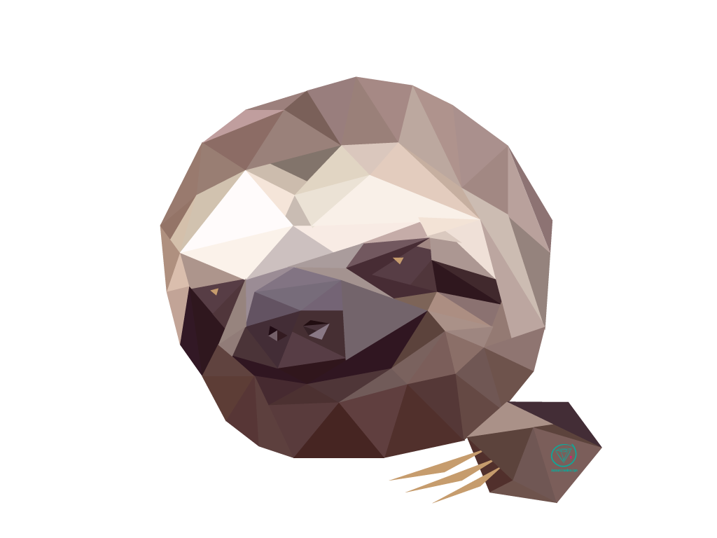 Sloth face png. The little of a