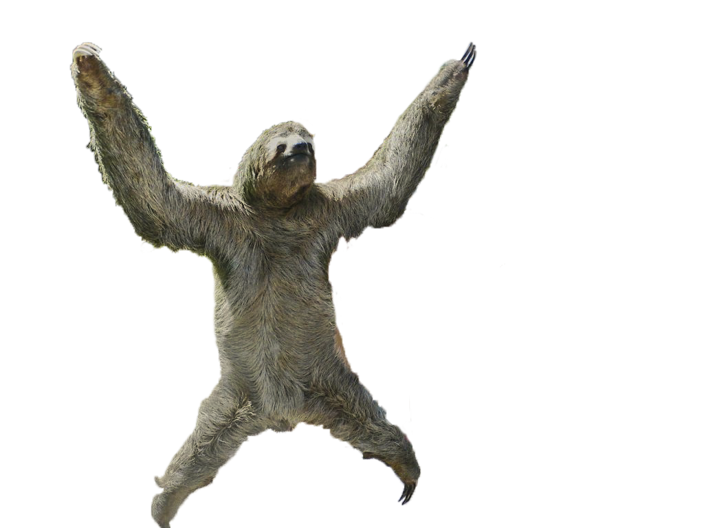 Sloth .png. Siothy cevo member