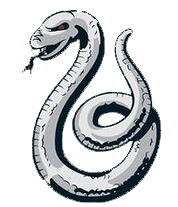 Slytherin drawing snake. Collection of high