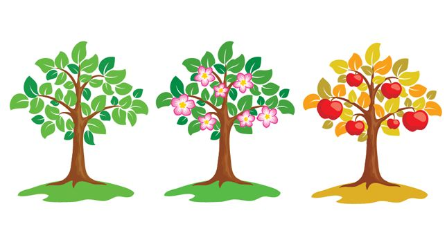 Small clipart apple tree. Drawing at getdrawings com