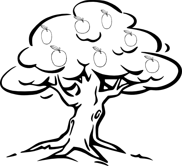 Bark drawing clip art tree. Apple at clker com