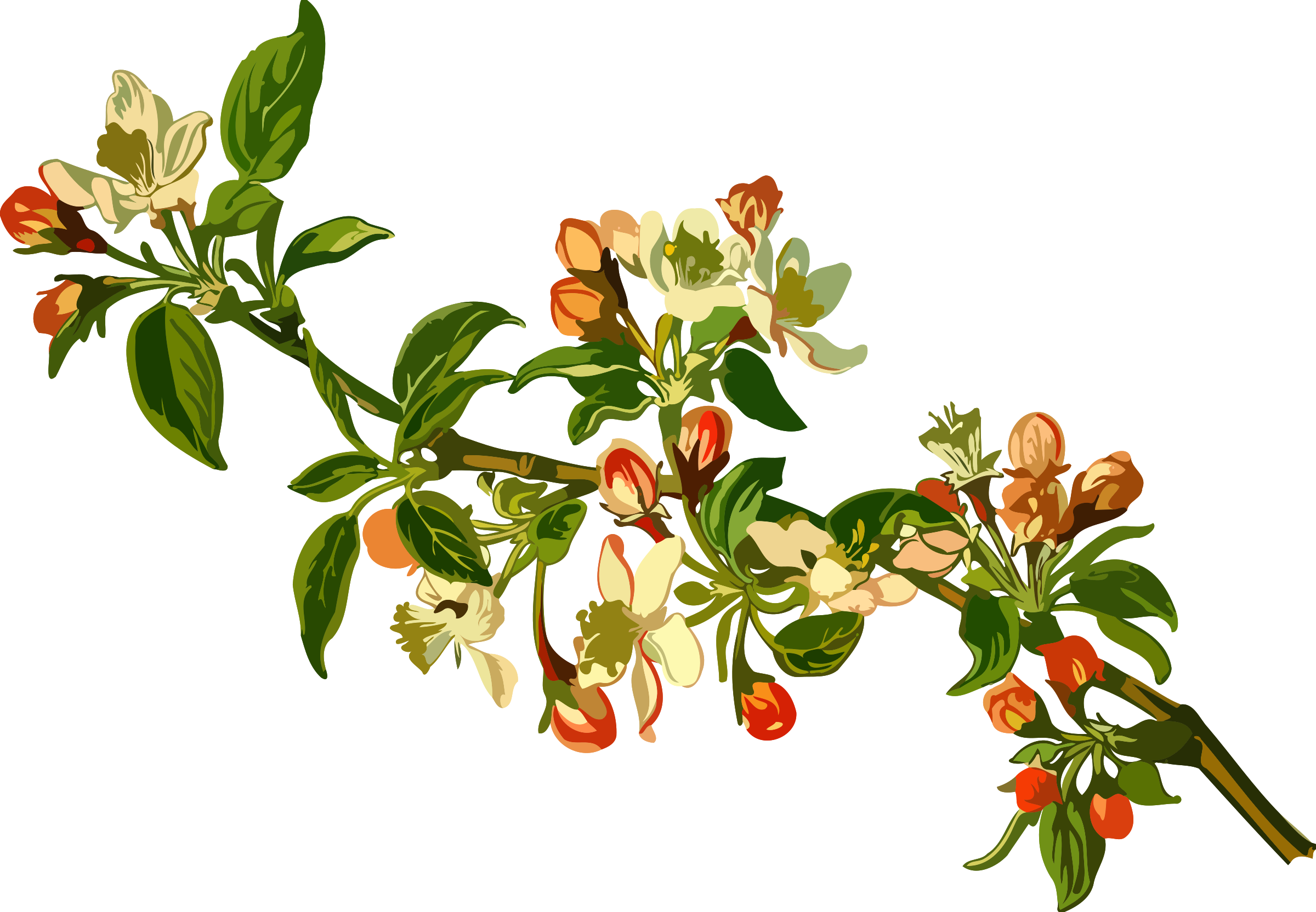 Small clipart apple tree. Low resolution big image