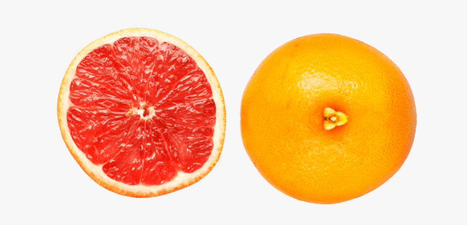 Small grapefruit. Clipart bitter food red