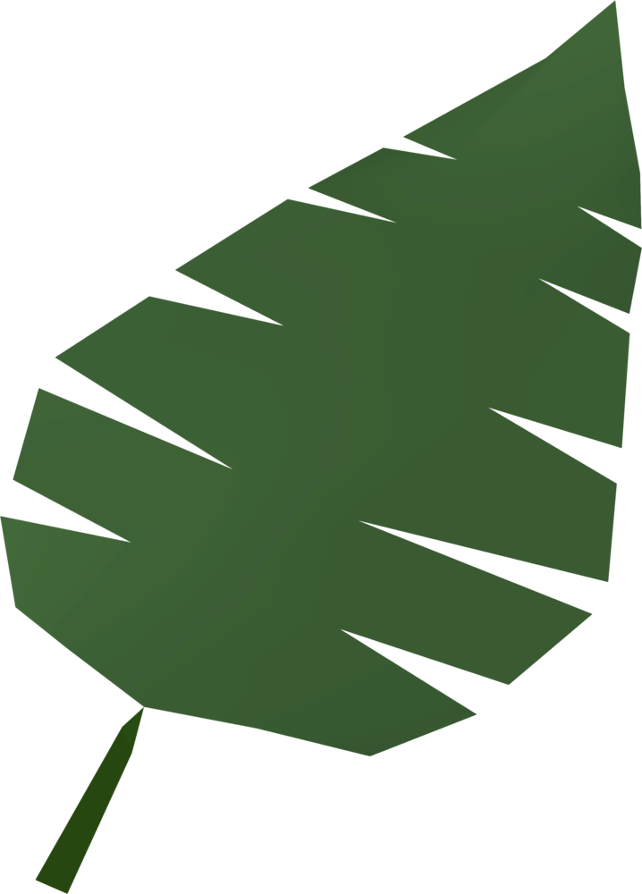 Small palm png. Image leaf detail runescape