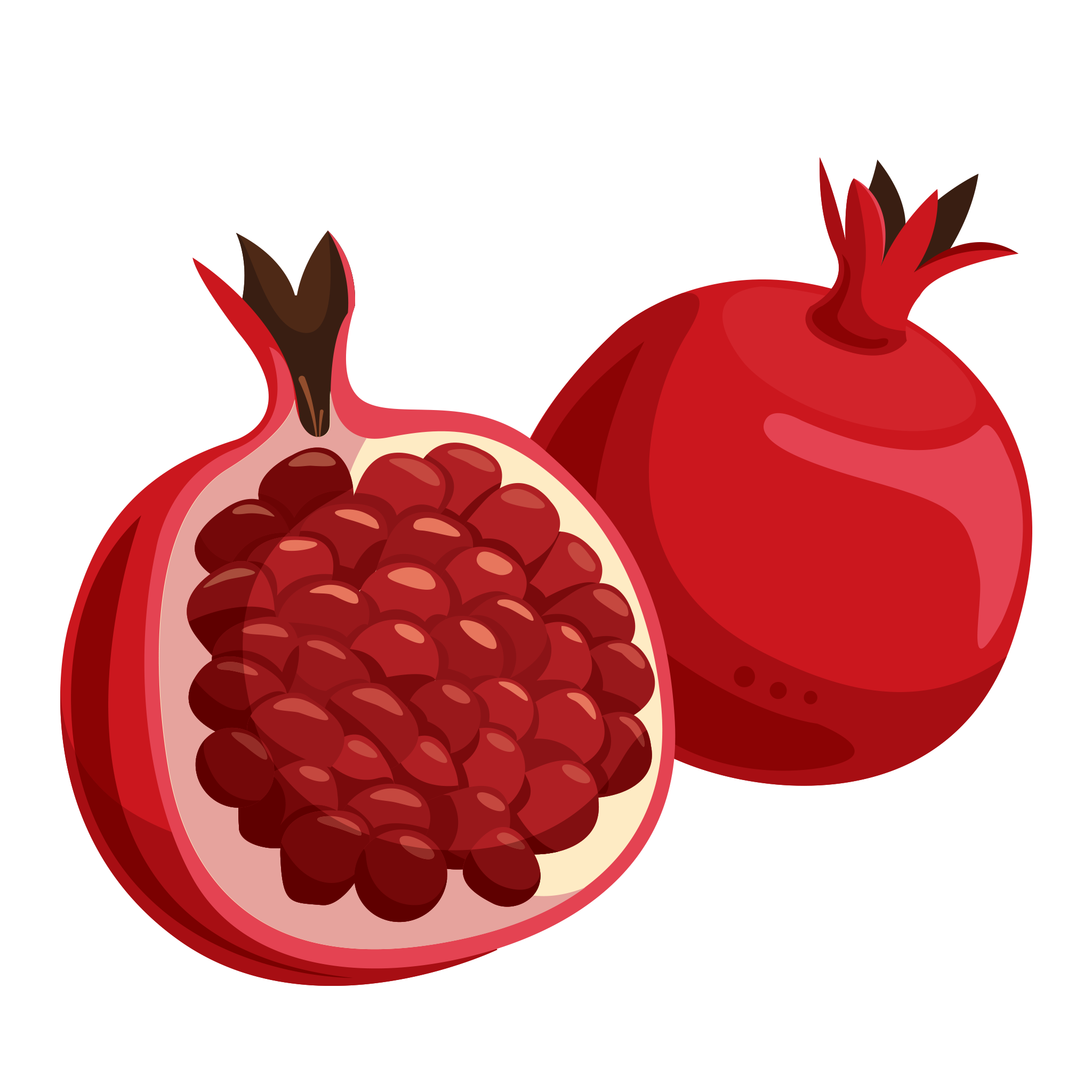 Small pomegranate. Png images free download