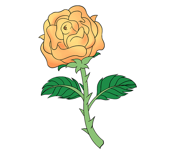 Smallpox drawing orange rose. How to draw a