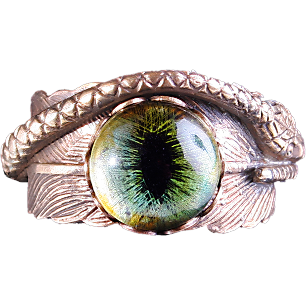 Snake eye png. Steampunk ring feathered serpent
