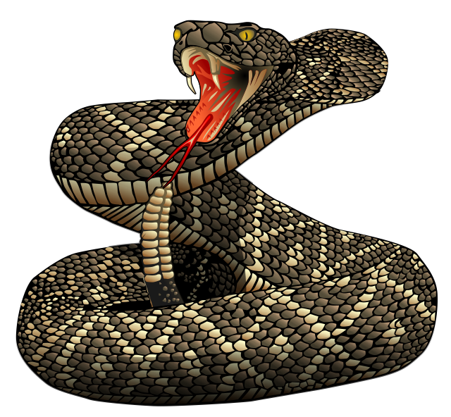 Snake head fangs png