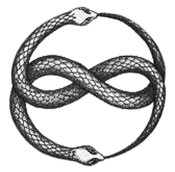 Snake infinity png. Cognitive osmosis in a