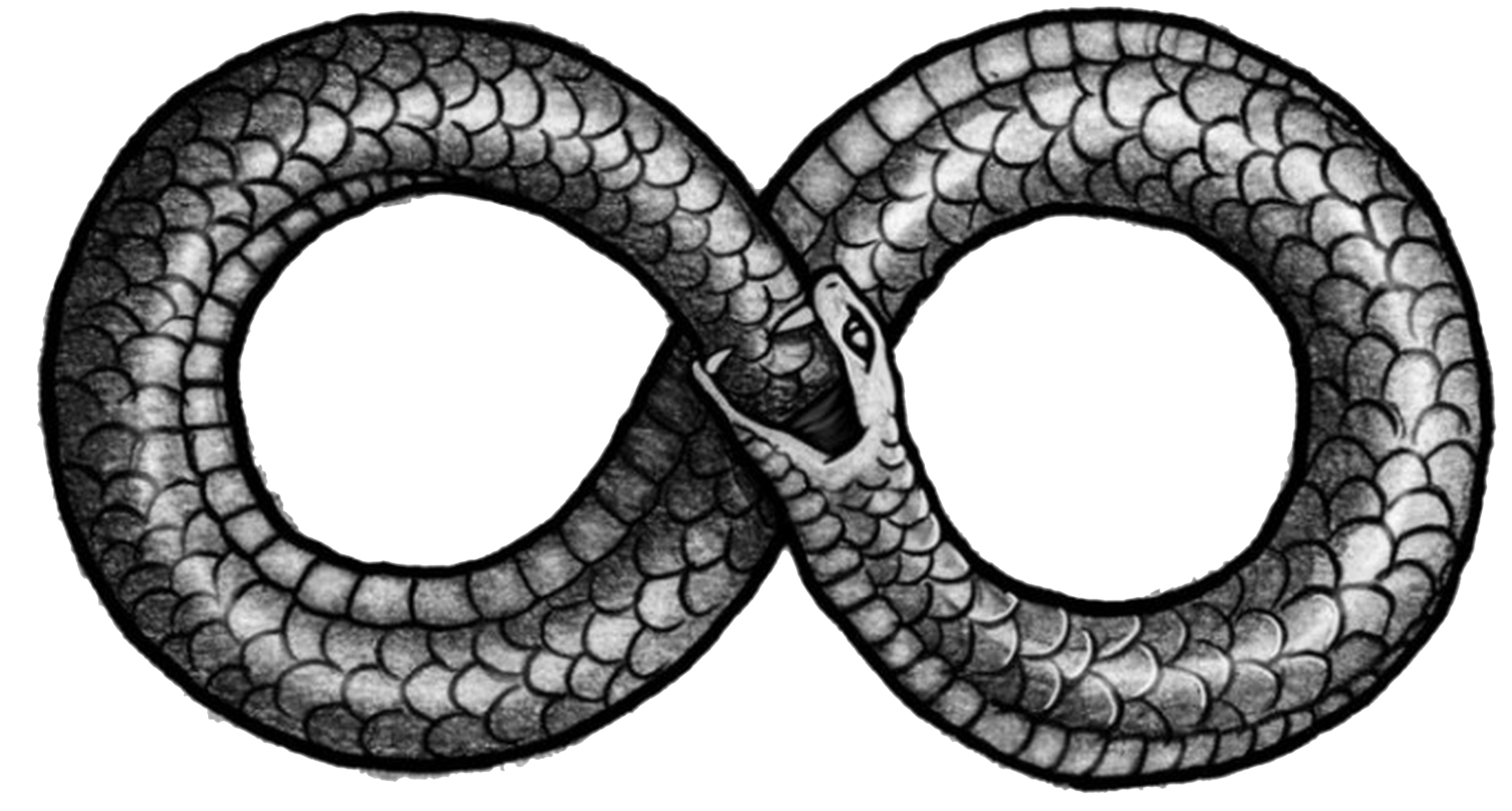 Snake infinity png. Ouroboros transparent images all