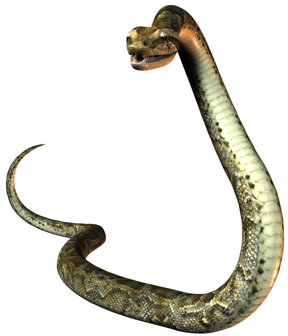 Snake tail png. Index of law society