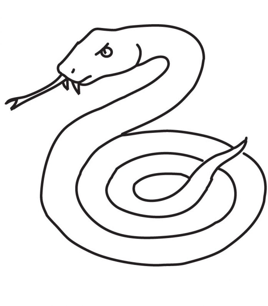 Coil drawing snake, Picture #995359 snakes clipart printable