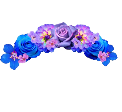 Sticker transparent flower crown. Snapchat png pic