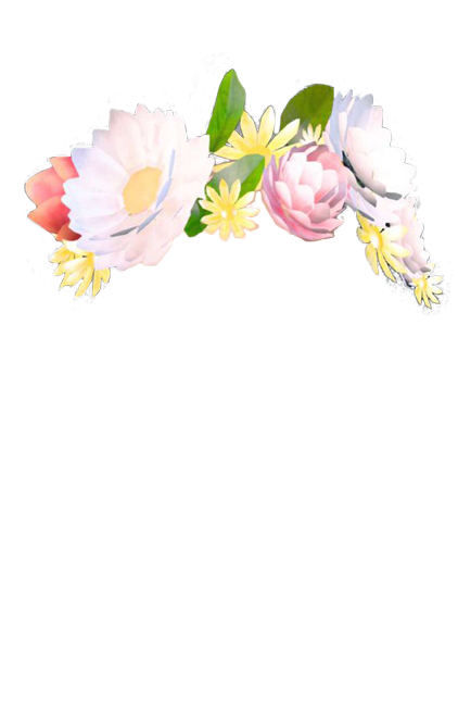 Snapchat flower crown png. All the filter pngs