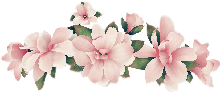 Snapchat flower png. Snap snapchatfilter filter flowers