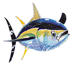 Snook drawing guy harvey. Official collectible silver medals
