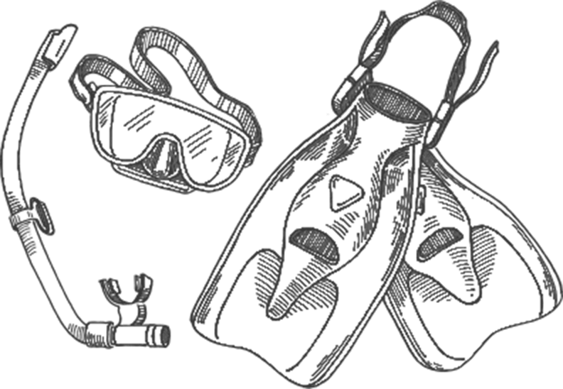 Snorkel Drawing Line Transparent Clipart Free Download