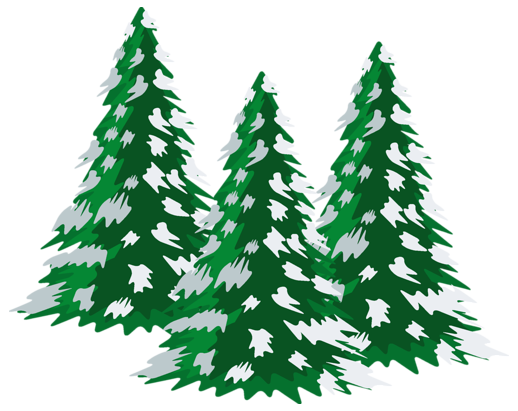 Snow covered pine trees png. Green snowy clipart gallery